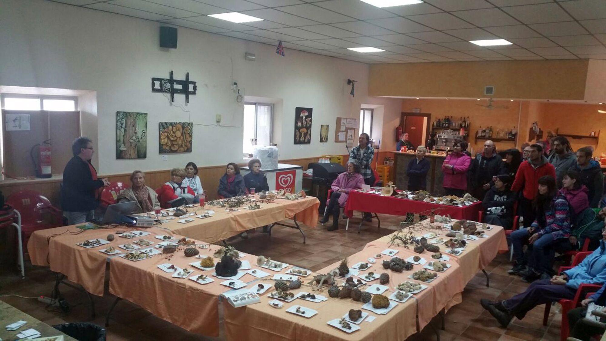 Las Jornadas Micológicas de Pomer celebran su XV edición