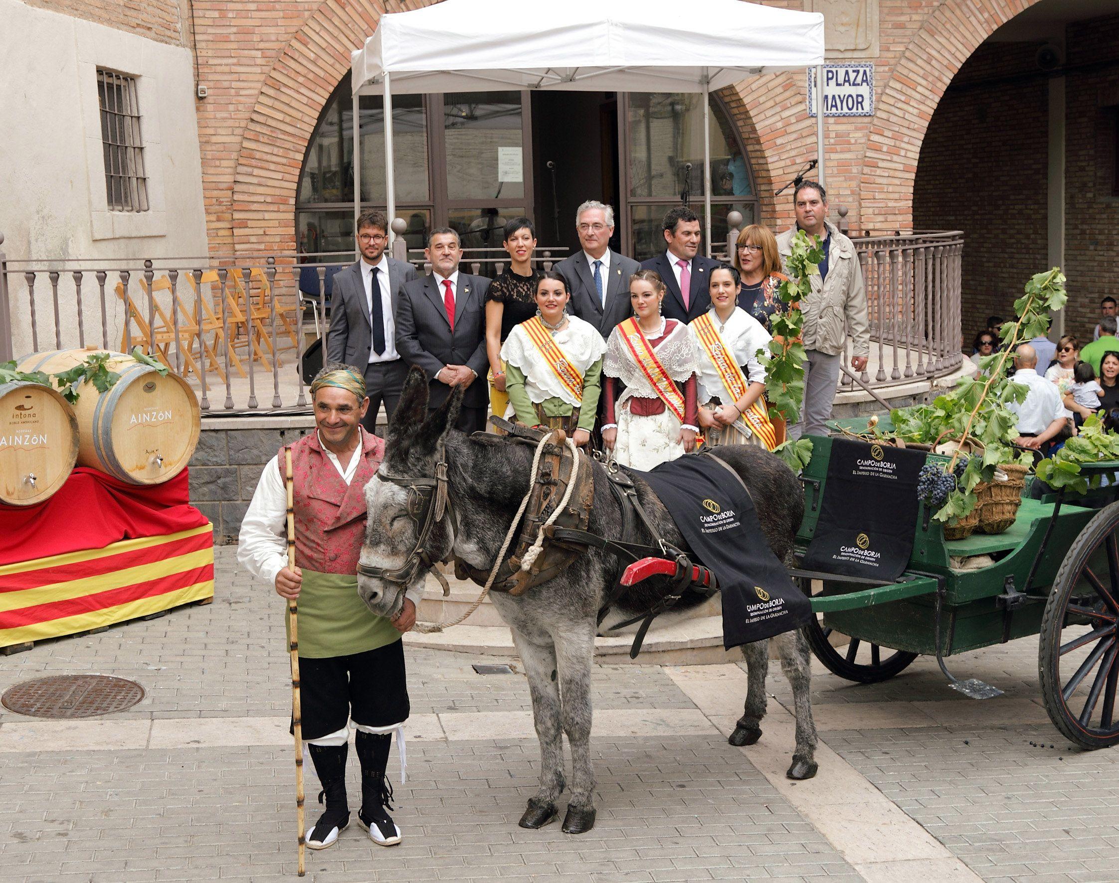 La tradición y la garnacha marcan el inicio de la vendimia en la Denominación de Origen Protegida Campo de Borja