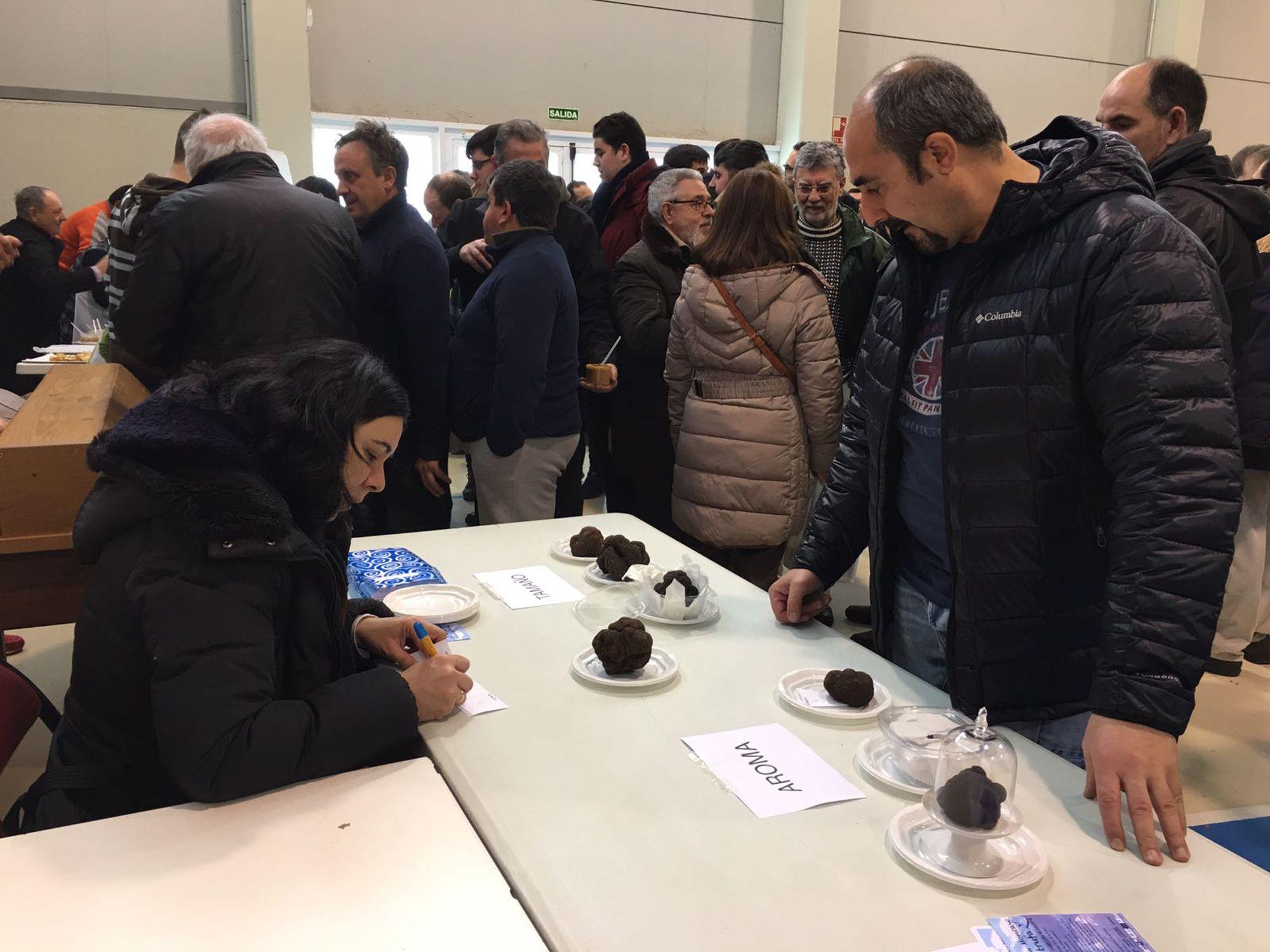 Gabinete de prensa y comunicación de la segunda Feria de la Trufa de Vera de Moncayo
