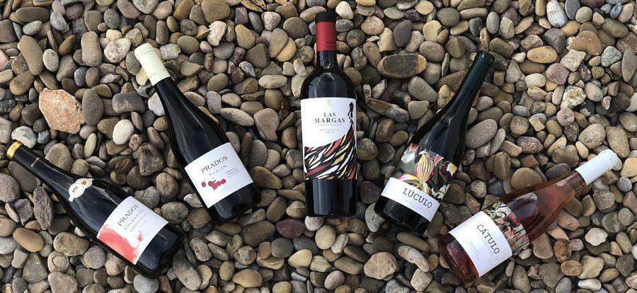 Axial Vinos celebra el Día Internacional de la Garnacha con una cata dirigida de sus cinco varietales más reconocidos