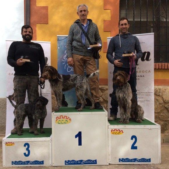 Ganadores II Concurso Perros Truferos Campo de Daroca