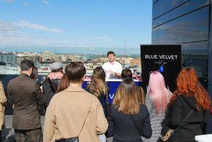 Presentación Blue Velvet