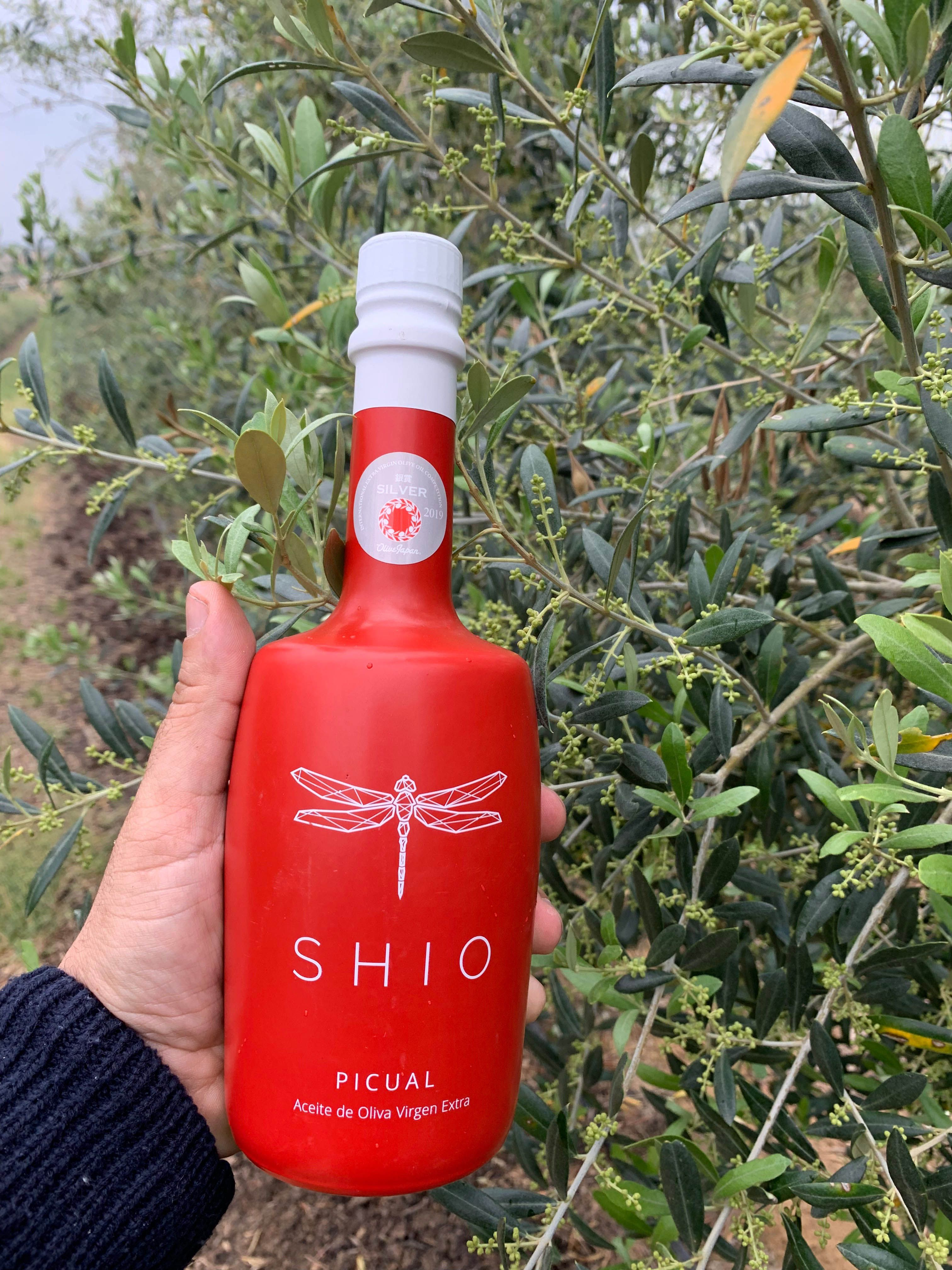 AOVE SHIO, única empresa aragonesa de aceite premiada con una medalla de plata en el prestigioso concurso Olive Japan
