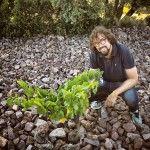 El aragonés Fernando Mora, nuevo Master of Wine, en el viñedo